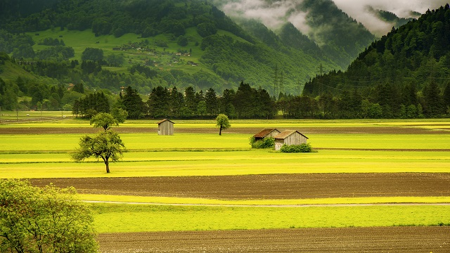 landscape-meadow-field-mountains-66874